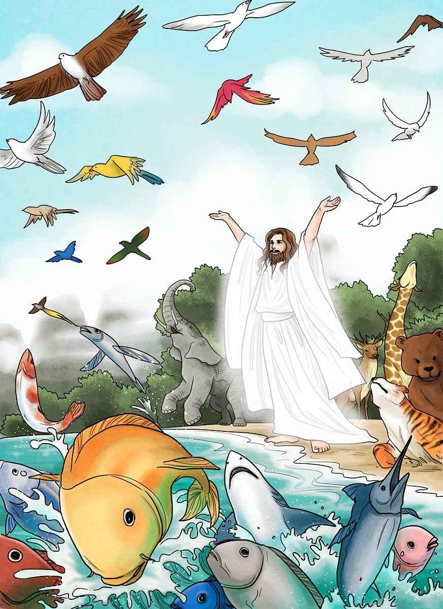 3 – Dios crea los animales